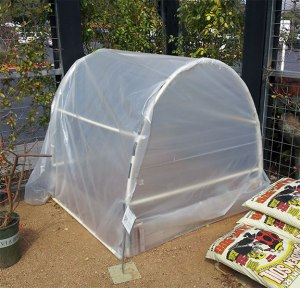 A Do-It-Yourself Greenhouse to Protect from Light Freezes